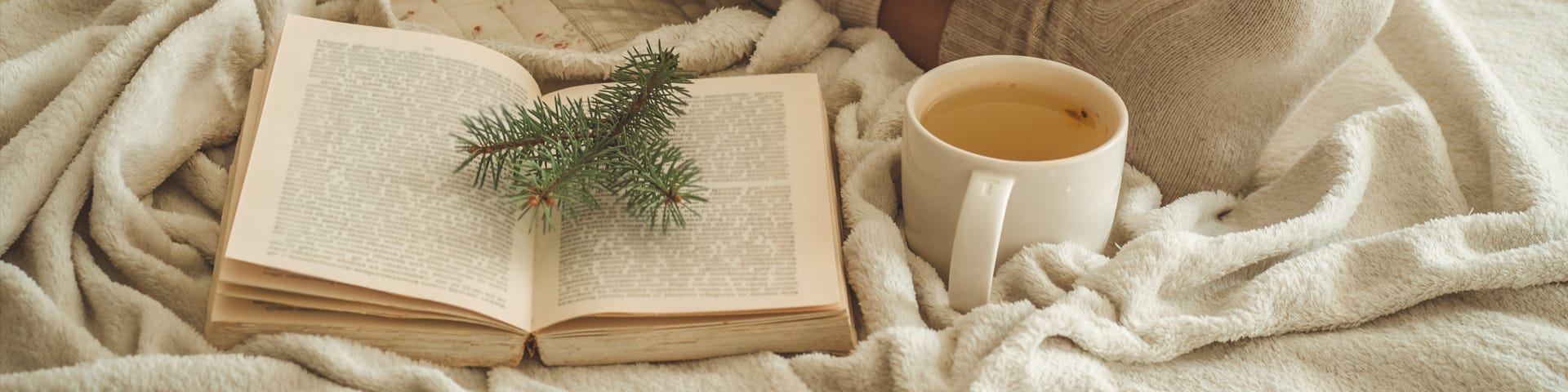 5 must read books this Winter